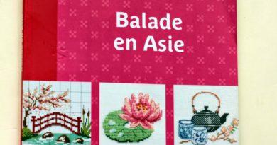 Книжная полка: Balade en Asie